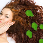 Используем крапиву для лечения волос: полезные свойства растения, рецепты