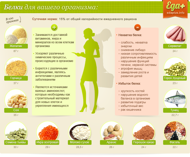 Содержание белков в продуктах