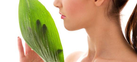 Девушка и зеленый лист растения