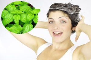 маска для седых волос с крапивой