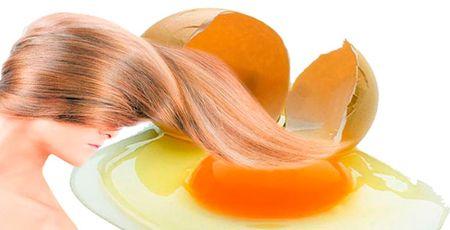 желтки для волос