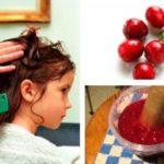 Клюквенный сок от вшей и гнид – инструкция по использованию
