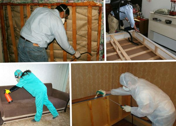 Безопасная дезинфекция в домашних условиях