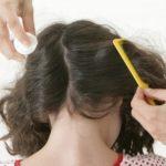 Как избавиться от гнид и вшей на длинных волосах быстро и в домашних условиях