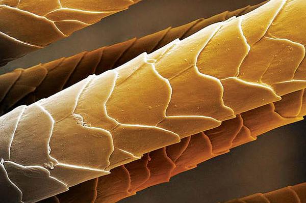 Биохимическая завивка на короткие волосы